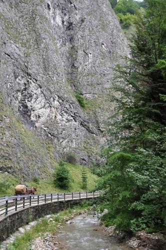 """Kaňon Lesnického potoka je překvapivě úzký, vysoké stěny kolem umocňují dojem naší """"malosti""""."""