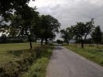 Vcelku úzká silnice, ale asfalt dobrý a skoro nic po ní nejezdí, takže pro cyklisty ideální. (Radim)