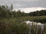 Okraj SOOS: rašelinová jezírka (Radim)