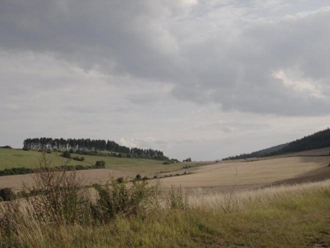 Krajina u Koněpruských jeskyní (Radim)