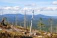 Stejně dobře je vidět komplex lesů od Boubína k Bobíku.