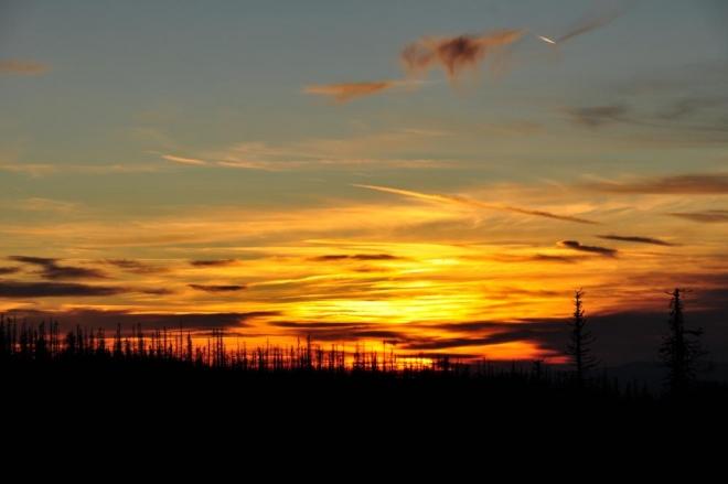 Hořící lesy před dvacátou večerní ...