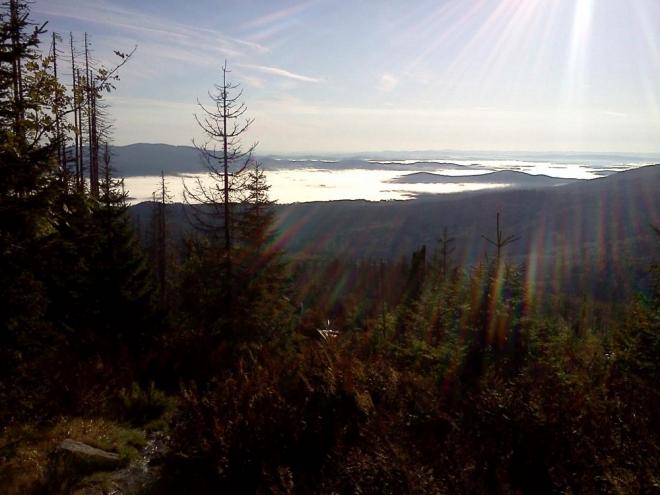 Dole už lze v odlesku slunce spatřit kousek hladiny Lipenského jezera. Slézám k Plešnému jezeru po novější značce odbočující ke kamennému moři.