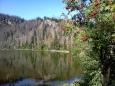 Díky zkrácenému sestupu do Pece můžu hodinu relaxovat a vyhřívat záda na lavičce u jezera. Až když postupně přijíždějí cyklisté mizím zpět ke kamennému moři.