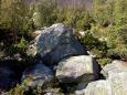 Kamenné moře je zvětšiny utopeno v husté kleči a tak pro focení příliš vhodné není.