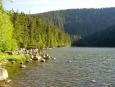 SROVNÁVACÍ FOTO 2004: Plešné jezero
