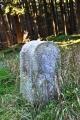 Mezní kameny lemují cestu u obory.