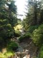 Tímto korytem jakéhosi občasného potoka vede občas značka.