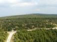 Výhled ke Stógu Izerskim přes právě rostoucí les a smutné zbytky dřívějších stromů.
