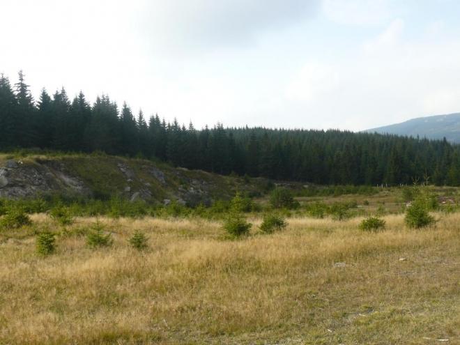 Bývalý povrchový lom (dle tvaru krajiny, infotabule tam kupodivu nebyla)