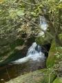 Sloupský potok v strmém údolí Štolpichu.