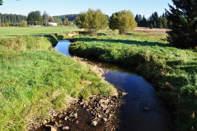 Horní tok Blanice je nad Arnoštovem krásnou říčkou.