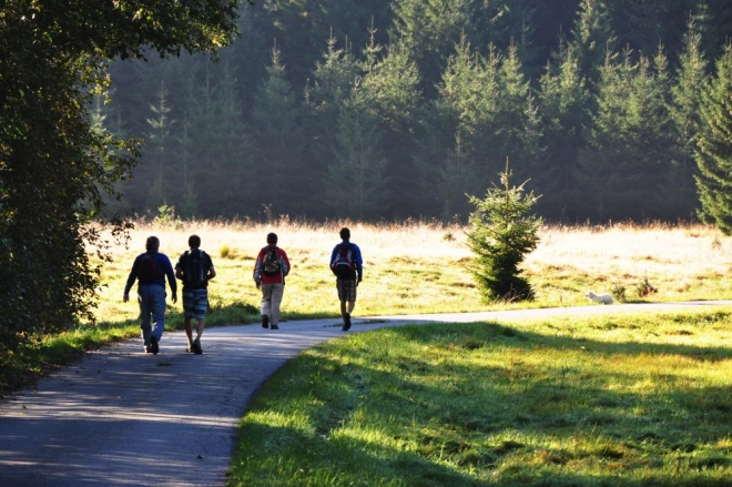 Z dáli slyšíme jeleny hájící svá území. Říjiště V jelení je za kopcem.