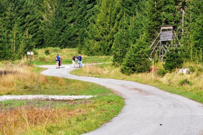 První část cesty má jen nevýrazné stoupání. Vpředu na cestě dokresluje zajímavou kompozici jelení bobek.