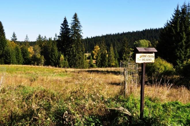 Zde končí Lesní cesta Skládky. Dobré je, že takto jsou označeny všechny cesty, dá se podle toho i orientovat.