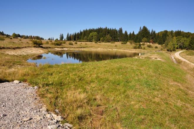 Odcházíme od nepojmenovaného a v mapách ještě nezaznamenaného rybníka a míříme dále k jihu.
