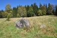 První, zatoulaný kámen zvěstuje skalní bloky kdesi nahoře nad našimi hlavami.