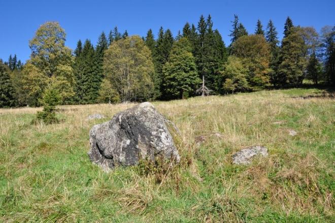 První zatoulaný kámen zvěstuje skalní bloky kdesi nahoře nad našimi hlavami.