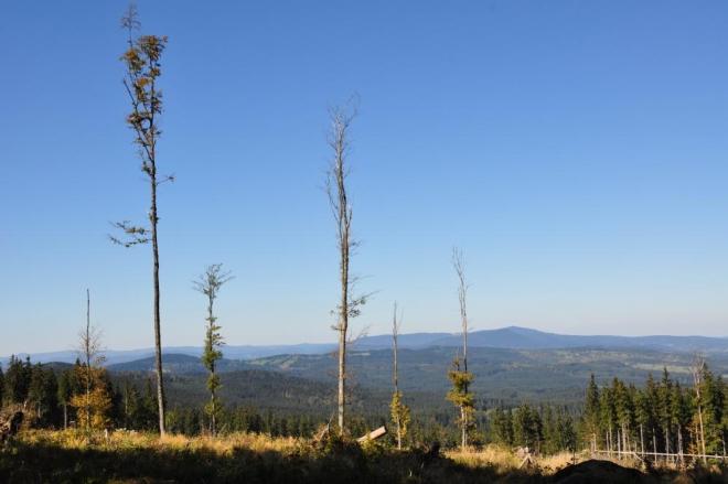 Východní svah je strmý a nabízí skvělé pohledy k Libínu.