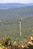 Také na Lesní cestu Prasečí houštiny, kterou právě naplno osvětlilo odpolední slunce.