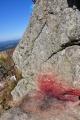 To, že je výstup na vrcholovou skálu nebezpečný je vidět i pod ní. Stopy krve se nedaly přehlédnout.