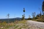 Doplňujeme vodu z pramene a z Lesní cesty Pramen uhýbáme na hřeben Dlouhého hřbetu.