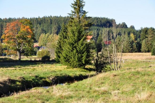 Arnoštov, kde můžete nalézt i zbytky staré lesní železnice, mířící do více míst a využívané k přepravě dřeva. Dnes zbyly většinou jen náspy.