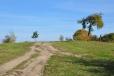 Obchvatem jdeme přes kopec a kolem výběhu koní a motokrosové tratě pomalu klesáme zpět k Netolickému, nebo taky Soudnému a Bezdrevskému potoku.