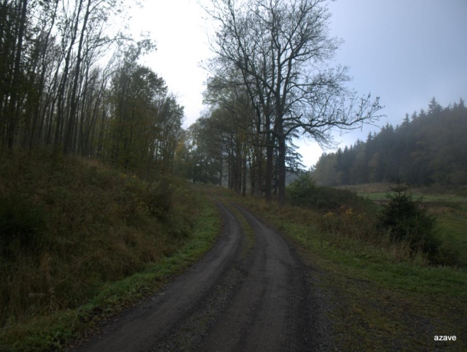stará předválečná silnice z Valeče do Doupova (do města Doupova)