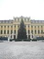 Vánoční stromek před Schönbrunnem