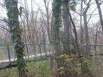 Břečtaňový most