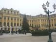Schönbrunn s vánočním stromkem