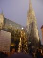 Stephansdom s vánočním stromem