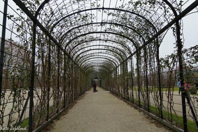 Zimní zahrada (Katka Žejdlová)