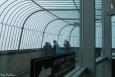 Na vrcholu Donauturm (Katka Žejdlová)