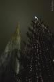Stephansdom s vánočním stromem (Katka Žejdlová)
