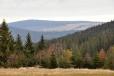 Pohled k Hadímu vrchu od Hůrky.