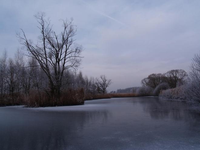 Rybník u Vomáčky.