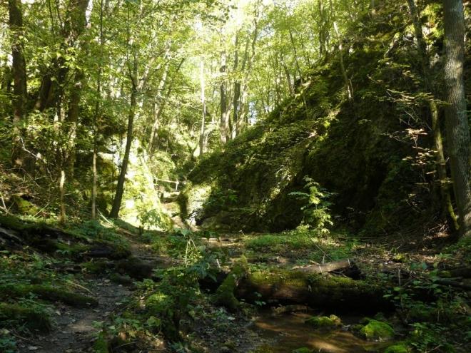 Údolí Bubovického potoka