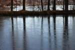 Předěl mezi Hlubokým a Zámeckým rybníkem