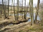 Trublů rybník u Všetče.