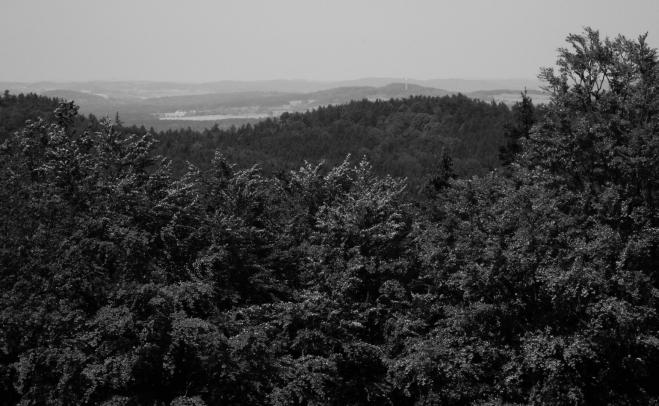 Výhled k Velkému Kamýku od Paseckého vrchu (625 m).