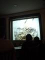 Ukázka z filmu - Beton (Becherovka s Tonikem)