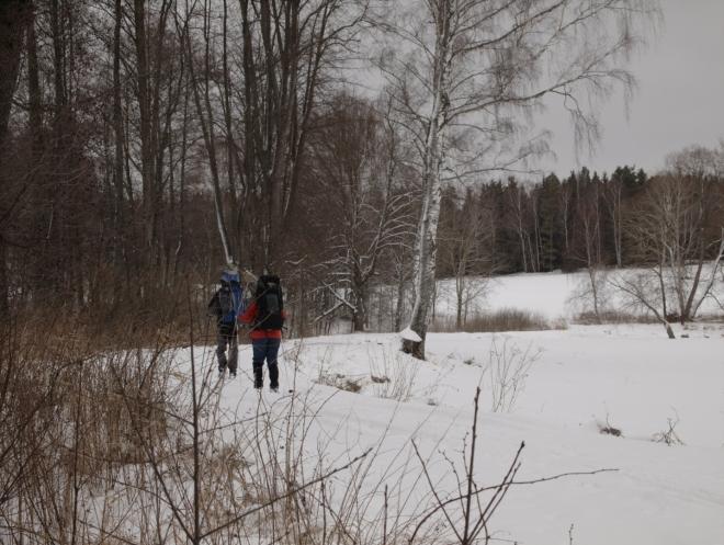 Kousek před vesničkou Tichá za rybníkem Tichá u potůčku Tichá je skutečné ticho (Radim).