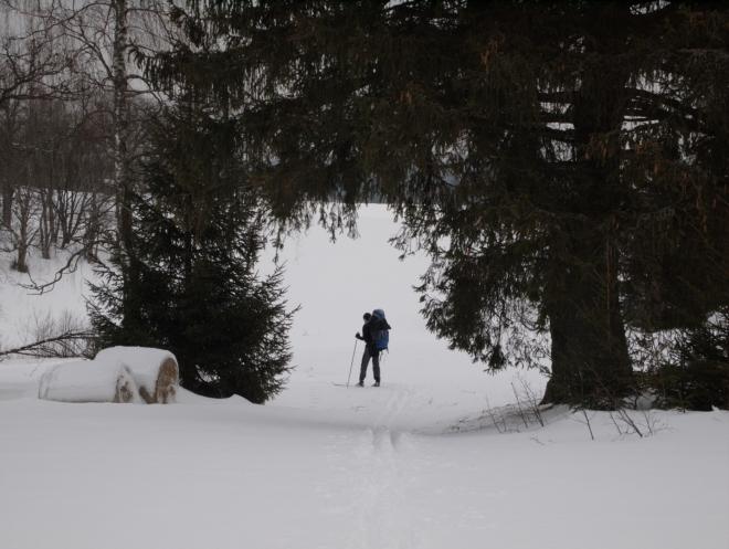 Před Pohořím na Šumavě (Radim)