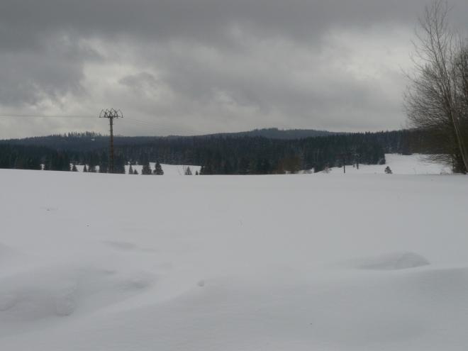 Krajina v centru Novohradek
