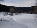 Údolíčko poblíž Lužnice. (Radim)