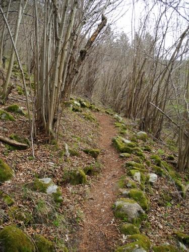 Kamenitou stezkou pomalu stoupáme nad tratí, kde právě projíždí vláček.