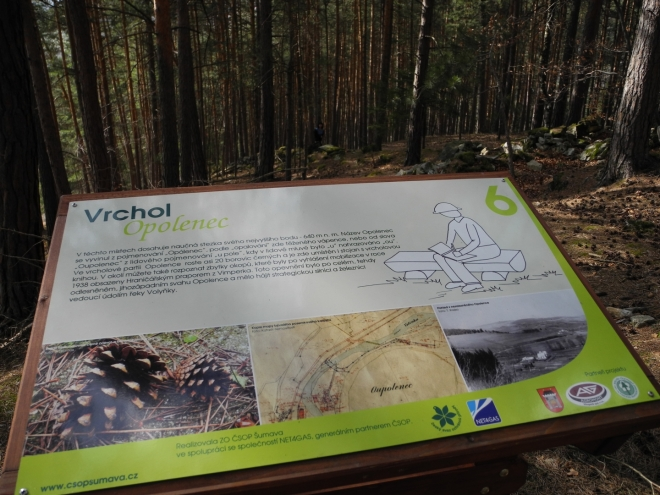 Samotný vrch Opolenec je tvořen ostrůvkem krystalického vápence, který je dnes již do značné míry vytěžený lomem. Vápenec zde vytvořil v rulách čočku 10-20 m silnou v délce asi půl kilometru.