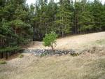 Lesní mýtiny jsou parcelovány navršenými kameny, kterých je v okolí mnoho.